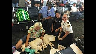 أم وثمانية جراء تشغل مسافري مطار تامبا