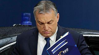A CEU és a Stop Soros sorsán múlhat a Fidesz Néppárt-tagsága