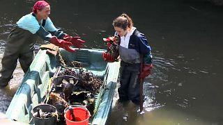 Tonnen von Plastikmüll in Flüssen