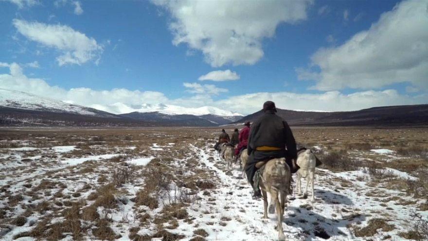 Quel avenir pour le peuple Doukha en Mongolie?