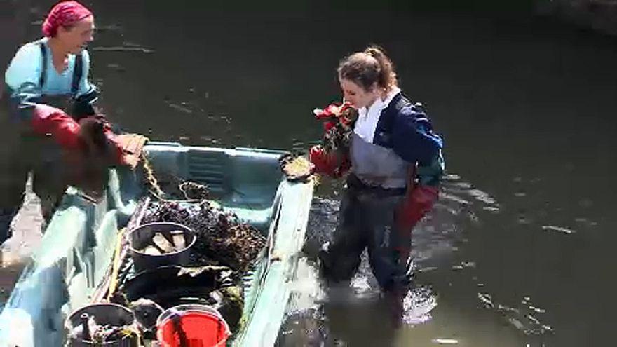 El plástico que nos inunda
