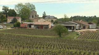Vinyards in France's Bordeaux region hit by hail storm