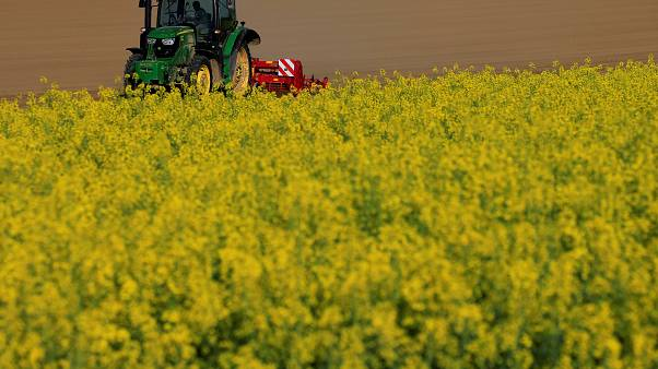 France 'committed' to glyphosate herbicide ban despite parliamentary rebuff