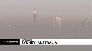 ابری از دود سیدنی را پوشاند