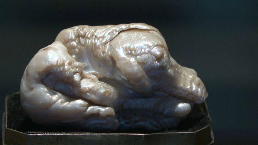"""""""La perle au lion dormant"""" vendue aux enchères"""
