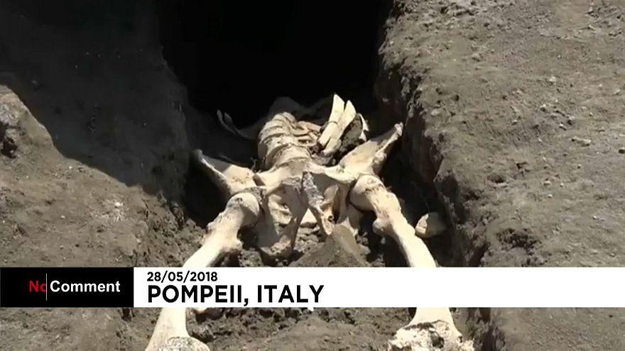 Une nouvelle victime du Vésuve découverte à Pompéi