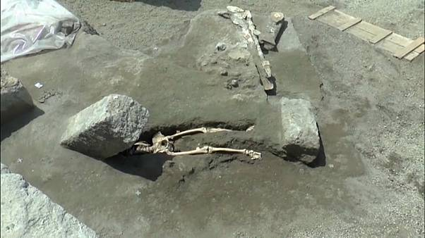 The skeleton discoverd by archaeologists in Pompeii