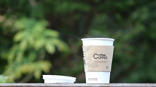 Scotland bans single-use coffee cups in government buildings