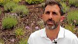 Mundial 2018: Ricardo acredita em Portugal