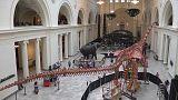 شاهد: وصول أكبر ديناصور في العالم إلى متحف بشيكاغو