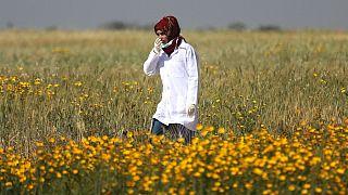 Female Palestinian medic Razan Al-Najar