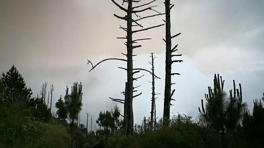 Vulkanausbruch in Guatemala: Retter müssen Einsatz abbrechen