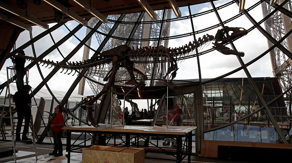 Οι δεινόσαυροι «πουλάνε»