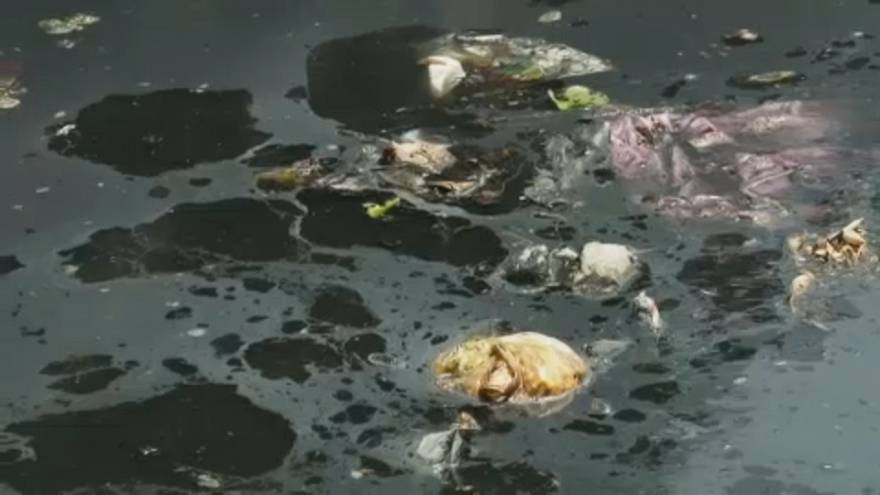 Целлофановые реки, пластмассовые берега