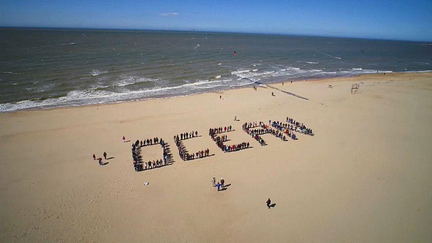 Giornata mondiale degli oceani: come salvare i mari dalla plastica?