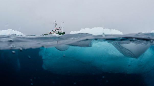 Das Forschungsboot von Greenpeace in der antarktischen Hope Bay.