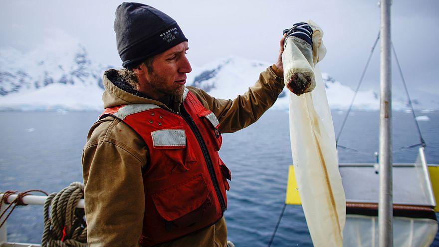 SOS: Εντοπίστηκαν μικροπλαστικά στην Ανταρκτική