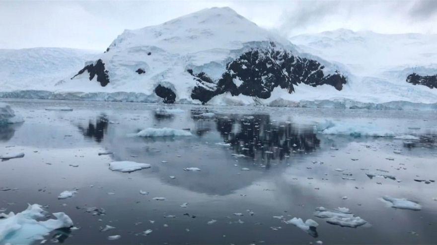 Poluição no Antártico preocupa Greenpeace