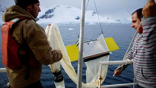 Greenpeace activists Grant Oakes and Marcelo Legname pull a manta trawl out