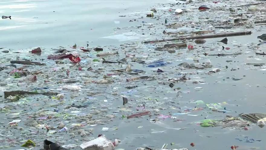 Giornata mondiale degli oceani: quanta plastica c'è nei nostri mari?