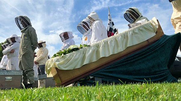 Во Франции прошли символические похороны пчеловодства