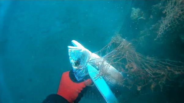 Geisternetze: Bedrohung aus den Tiefen des Meeres