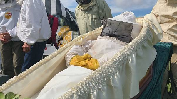 Beekeepers stage funeral for France's dying bee population