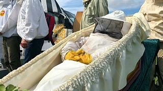 کندوداران فرانسوی زنبورها را «تشییع» کردند