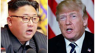 Trump: Kuzey Kore liderini ABD'ye davet edebilirim