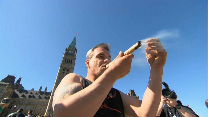 Senado do Canadá aprova legalização do consumo de canábis