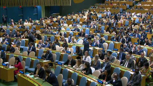 Deutschland in Weltsicherheitsrat gewählt