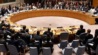 ΟΗΕ: Εξελέγησαν τα νέα μη μόνιμα μέλη του Συμβουλίου Ασφαλείας