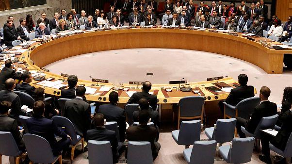 Conseil de sécurité : cinq nouveaux pays membres