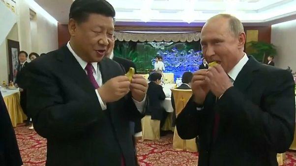 Putin testet chinesische Baozi-Klöße