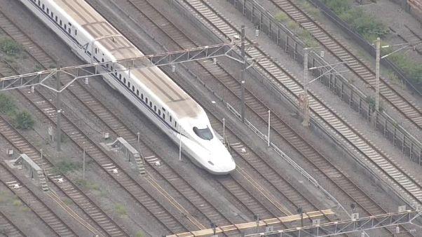 Japan: 22-Jähriger geht mit Messer auf Passagiere im Zug los