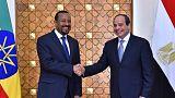الرئيس المصري عبد الفتاح السيسي  يصافح رئيس الوزراء الاثيوبي أبي أحمد