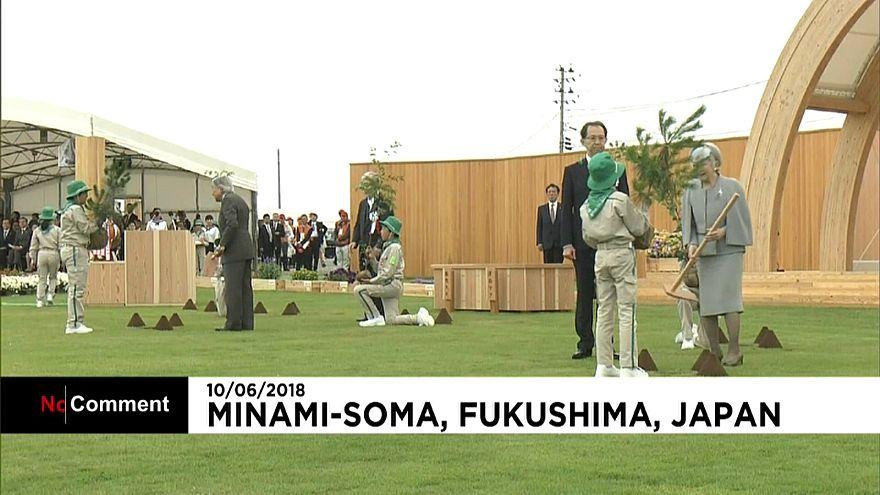 Fukushima : des arbres en signe de renouveau