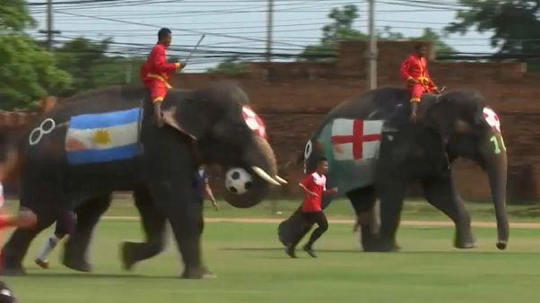 """""""La mano de Dios"""" de Maradona en versión elefante"""