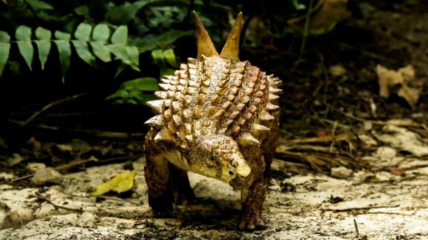 Une nouvelle espèce de dinosaure découverte au Mexique