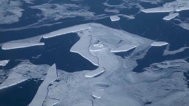 Таяние льдов в Антарктике ускорилось