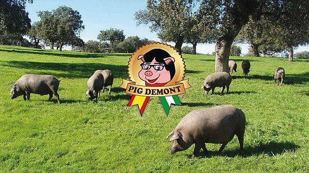Andalusischer Schinken: Puigdemont fühlt sich als Schwein verunglimpft