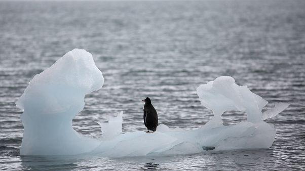 Rohamtempóban olvad az Antarktisz