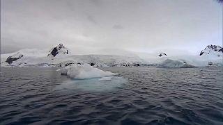 Antarktika'da buzullar son on yılda üç misli hızla eridi
