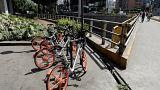 هولندا قد تحفز موظفيها مالياً لاستخدام الدراجات