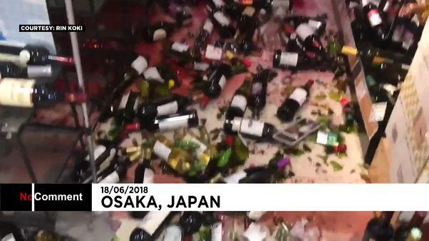 Terremoto en Japón: tuberías reventadas y vino por los suelos