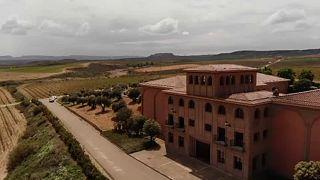 Una bodega aragonesa usa el big data para mejorar sus vinos