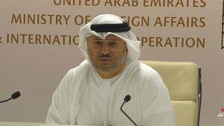 وزير الدولة الإماراتي  للشؤون الخارجية