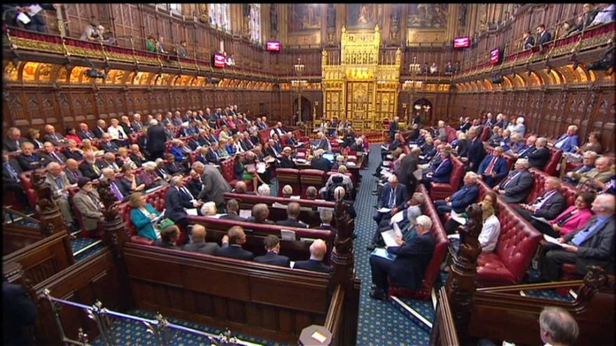 """Lords reject May plan for """"meaningful vote"""""""