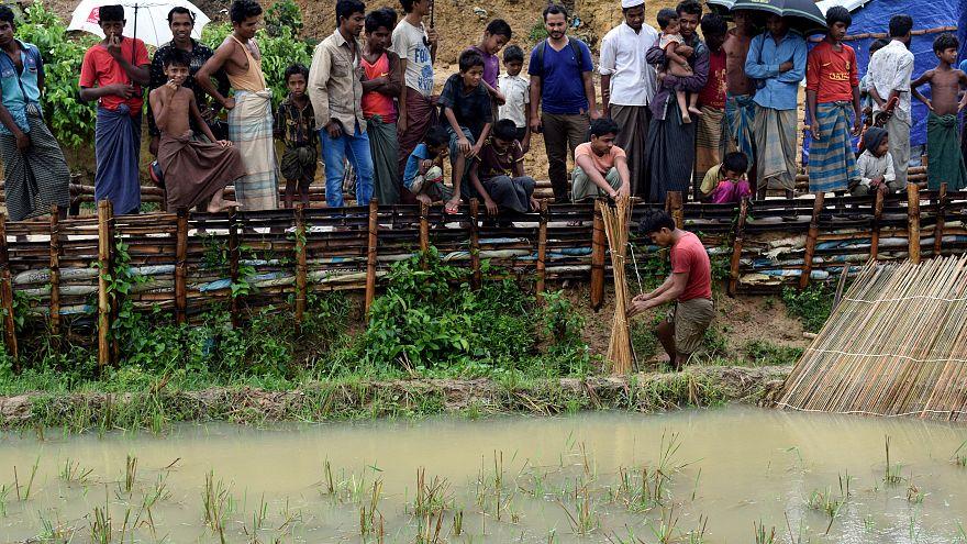 Rohingya Muslim refugees in Myanmar