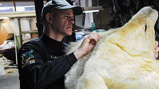 طوفان آذرخش؛ عملیات جهانی دفاع از حیات وحش